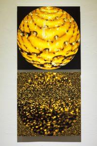 ECHO: Concerto Gold 2-panel metal print 12x24