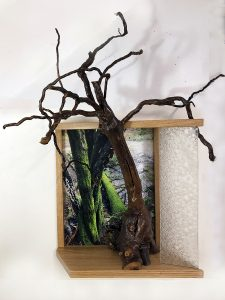 """Eva M. Capobianco • <em>FLT – Map 27, Moss, Stream and Root</em> • Photo, re-used wood and glass • 21""""×26""""×12"""" • $475.00<a class=""""purchase"""" href=""""https://state-of-the-art-gallery.square.site/product/eva-m-capobianco-flt-map-27-moss-stream-and-root/278"""" target=""""_blank"""">Buy</a>"""