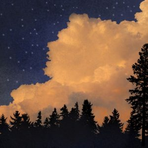 """Daniel McPheeters • <em>Evening Cloudscape</em> • Mixed media on panel • 24""""×17"""" • $200.00 • <a class=""""purchase"""" href=""""https://state-of-the-art-gallery.square.site/product/daniel-mcpheeters-evening-cloudscape/333"""" target=""""_blank"""">Buy</a>"""