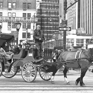 """Nancy V. Ridenour • <em>New York City Horse and Buggy</em> • Archival inkjet on canvas • $150.00 • <a class=""""purchase"""" href=""""https://state-of-the-art-gallery.square.site/product/nancy-v-ridenour-new-york-city-horse-and-buggy/350"""" target=""""_blank"""">Buy</a>"""