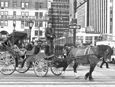 """Nancy V. Ridenour • <em>New York City Horse and Buggy</em> • Archival inkjet on canvas • $150.00<a class=""""purchase"""" href=""""https://state-of-the-art-gallery.square.site/product/nancy-v-ridenour-new-york-city-horse-and-buggy/350"""" target=""""_blank"""">Buy</a>"""