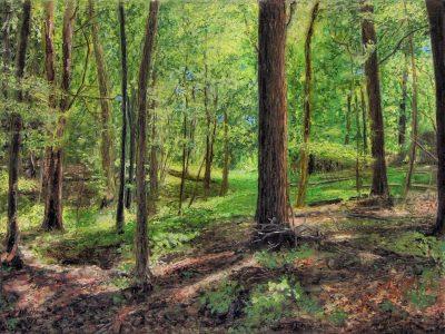 """Ed Brothers • <em>Spring Woods</em> • Oil pastel • 11½""""×8½"""" • NFS"""
