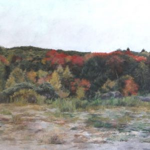 "Diane Newton • <em>The Edge of Autumn</em> • Pastel on black Arches paper • 44""×30"" • $3,500.00"