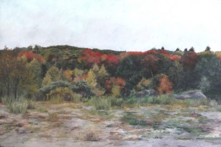 """Diane Newton • <em>The Edge of Autumn</em> • Pastel on black Arches paper • 44""""×30"""" • $3,500.00<a class=""""purchase"""" href=""""https://state-of-the-art-gallery.square.site/product/diane-newton-the-edge-of-autumn/419"""" target=""""_blank"""">Buy</a>"""