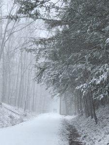 "Patty L Porter • <em>Snow Mist ~ Black Diamond Trail</em> • Inkjet on board • 16""×20"" • $200.00"
