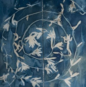 "Christine Chin • <em>Invasive Species Cyanotypes: Eurasian Watermilfoil (Myriophyllum spicatum)</em> • Cyanotype photogram • 22""×22"" • $200.00"