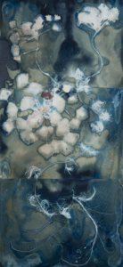 "Christine Chin • <em>Invasive Species Cyanotypes: European Water Chestnut: Trapa natans</em> • Cyanotype photogram • 15""×33"" • $750.00"