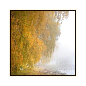 "David Watkins Jr • <em>Willows in the Mist No.2</em> • Archival pigment on canvas • 30""×30"" • $425.00"