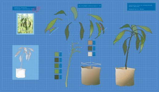"""Margy Nelson • <em>Blueprint for an Avocado</em> • Limited edition digital print • 22""""×14"""" • $220.00"""