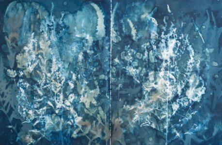 "Christine Chin • <em>Invasive Species Cyanotypes: Purple loosestrife (Lythrum salicaria)</em> • Cyanotype photogram • $750.00<span class=""sold""></span>"